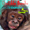 Indelible Bonobo