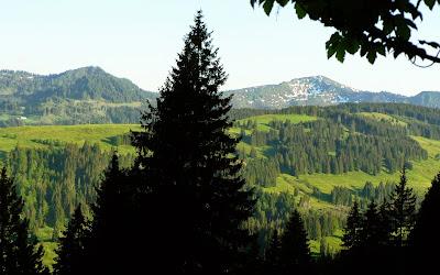 Ausblick beim Abstieg vom Am Eck nach Gunzesried