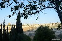 Jérusalem du Mont des Oliviers