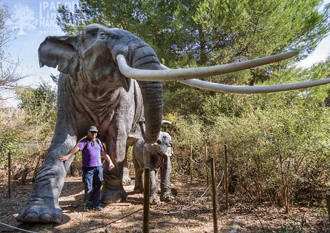 Elefante antiguo. Reproducción existente en el Centro de interpretación del Campillo, en Rivas-Vaciamadrid.