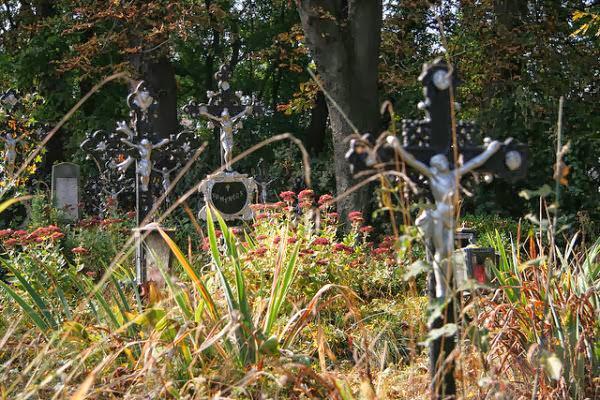 viaje a viena para visitar el cementerio de los sin nombre