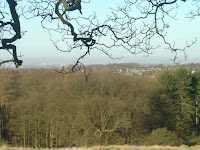 Manchester from Lyme Park