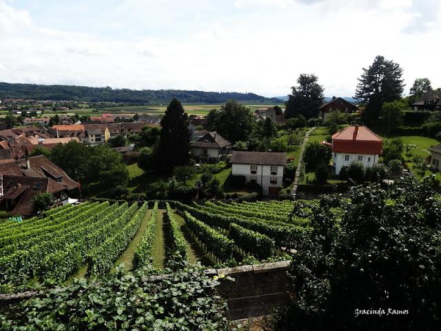 passeando - Passeando pela Suíça - 2012 - Página 14 DSC05251