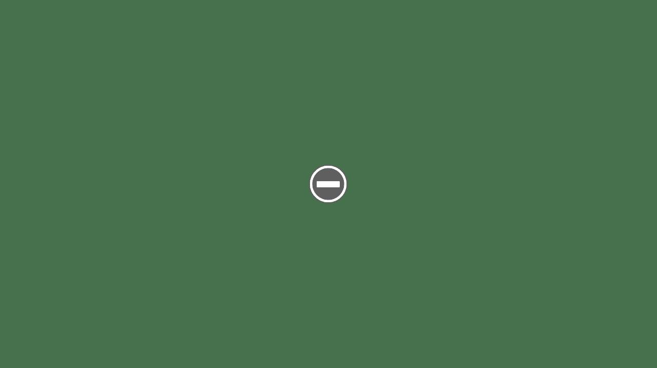 Cobra Classic  IMG_0430+%2528Custom%2529