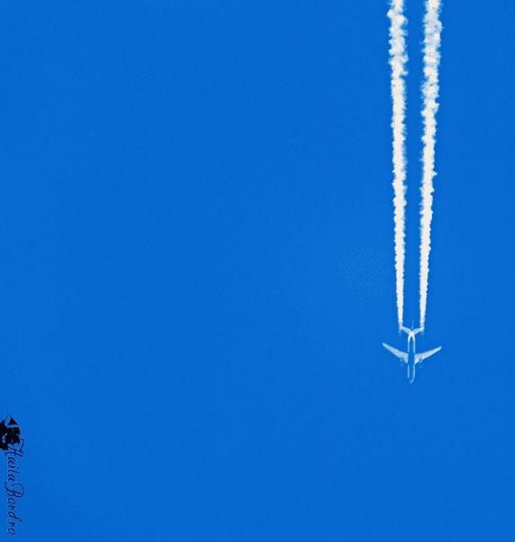 avion peste bucegi