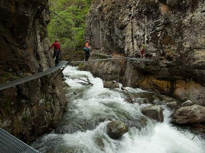 Acabem la jornada caminant còmodament per les Gorges de Carançà