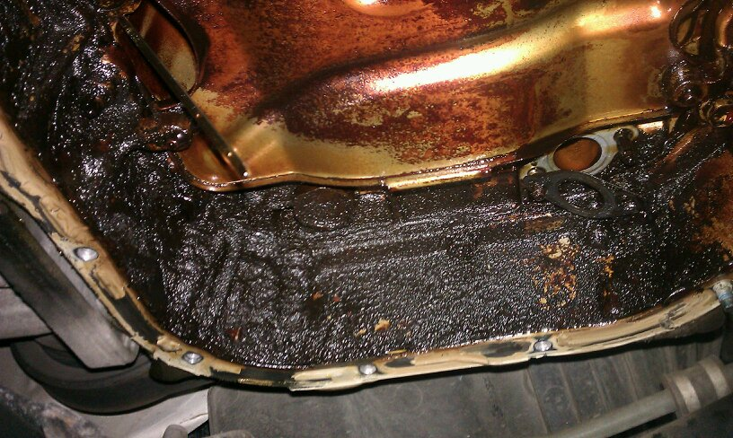 Pcv Delete Sludge Problems Honda Tech Honda Forum