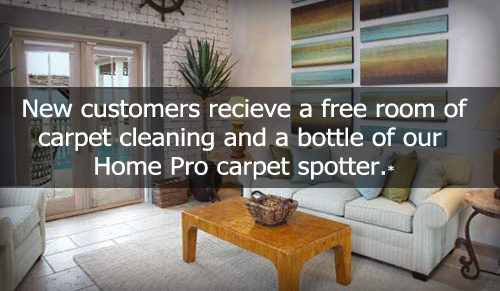 Roseville Minnesota Carpet Cleaning