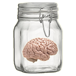 IQ Jar - Put your mind into it!