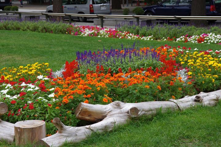花で飾られた大通公園