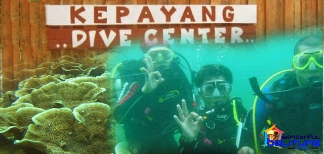 one-day-dive-prices-belitung-adventure