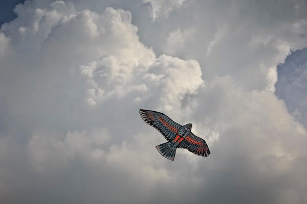 layang-layang burung helang