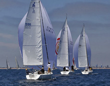 J105s fleet sailing Long beach race week