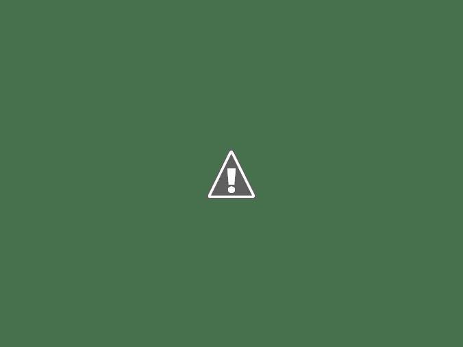 đầu kéo mỹ máy maxxforce màu xanh 2010