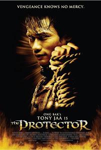Người Bảo Vệ - Revenge Of The Warrior - The Protector poster