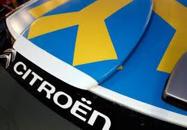 Techo DS3 WRC suecia