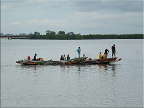Canoas en el río Casamance