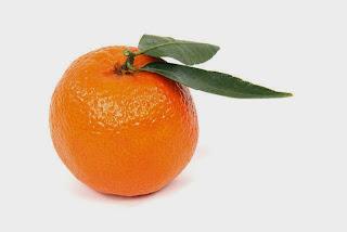 Afbeeldingsresultaat voor clementine