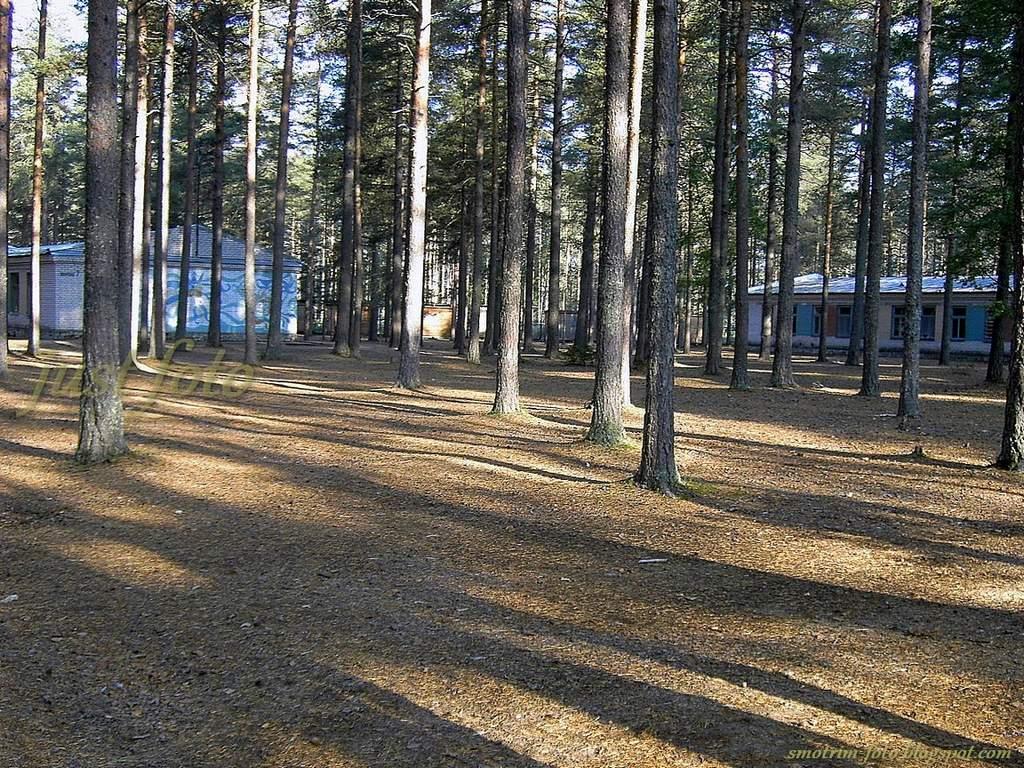Семиозерье лагерь пейзажи фото