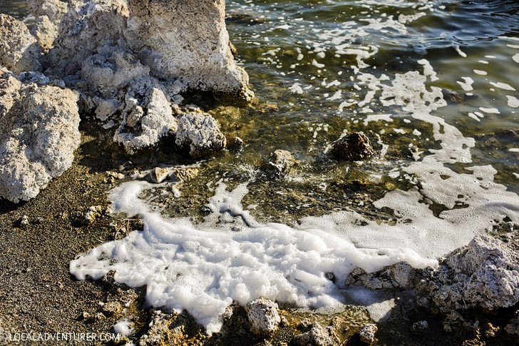 Sea Foam at Mono Lake Tufa State Reserve.