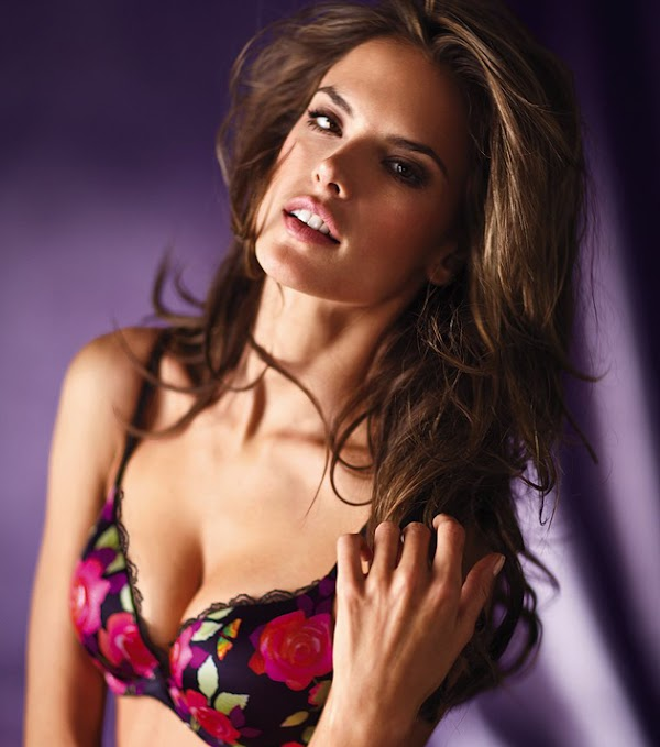 Alessandra Ambrosio modeled sexy clothes & lingerie [66 pics]:celebrities,Best,sex,lingerie,models0