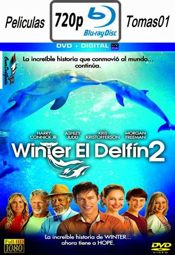 La Gran Aventura de Winter el Delfín 2 (2014) BRRip 720p