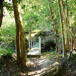 Bridge north of Cedar Brush track head (365708)