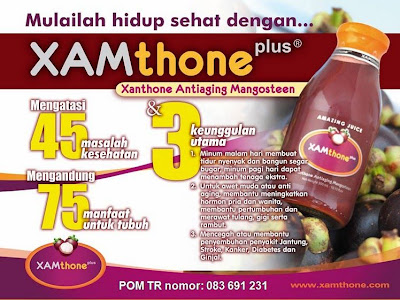XAMthone%2520Plus Proposal Bisnis Dahsyat
