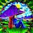 adam knachel avatar image