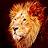 David Follen avatar image