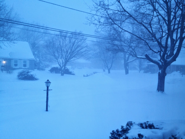Blizzard morning
