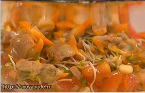 добавить морские  моллюски