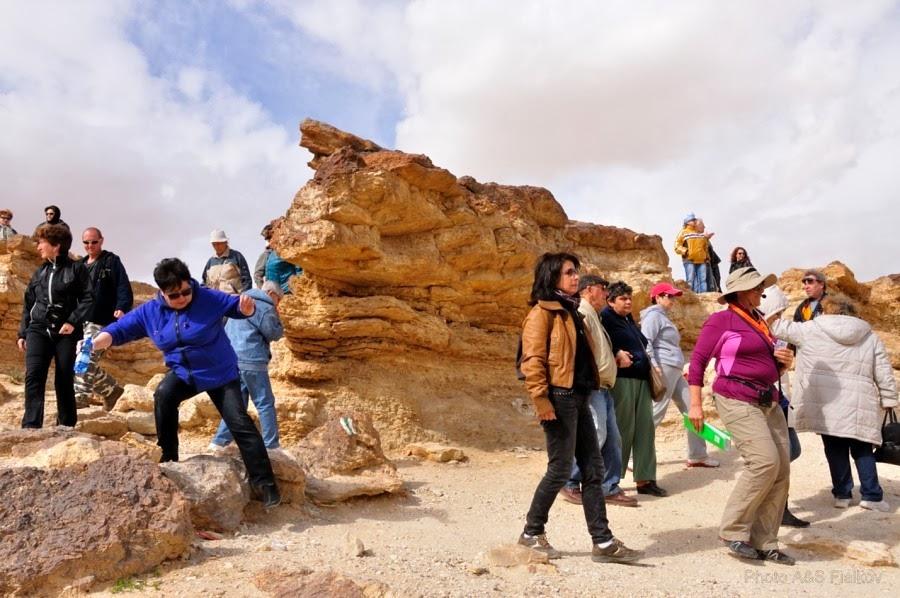 Мы приехали к Эйн Йоркам. Экскурсия гида Светланы Фиалковой в пустыню Негев.