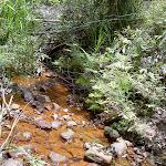 Campbells Creek (28967)