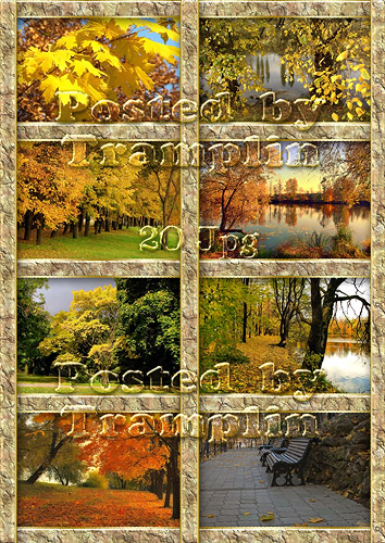 Клипарт для вашего творчества – Золотая осень
