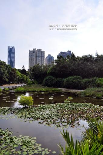 科博館植物園
