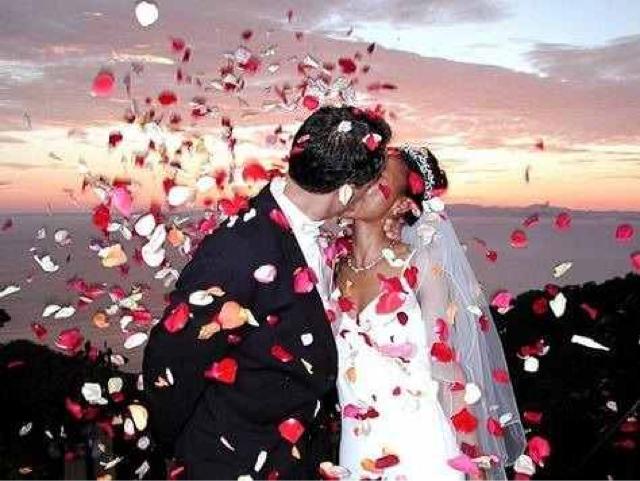 Pétalos de rosa para boda