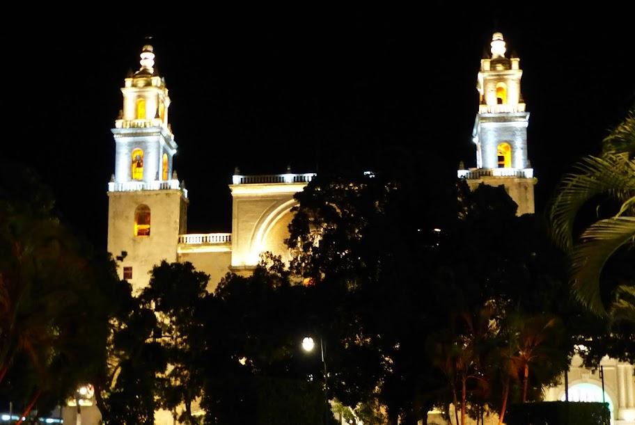 Etoiles du mexique Octobre-Novembre 2012 P1020048