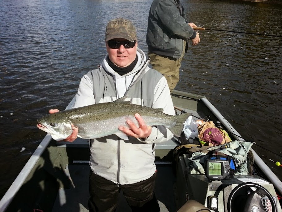 Grand Rapids Steelhead Fishing
