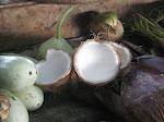 Banyuatis: marché de Seririt