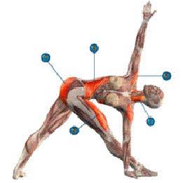 Отстройка тела в асанах и при движениях