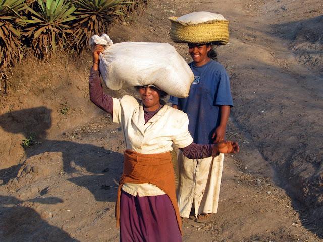 صور من مدغشقر Madagascar 14850615333