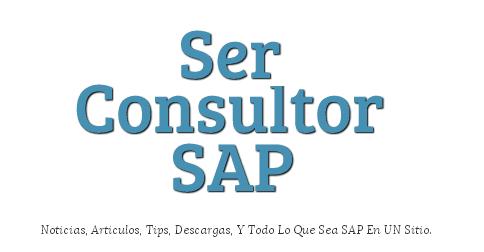 Todo sobre los modos en SAP | Ser Consultor SAP