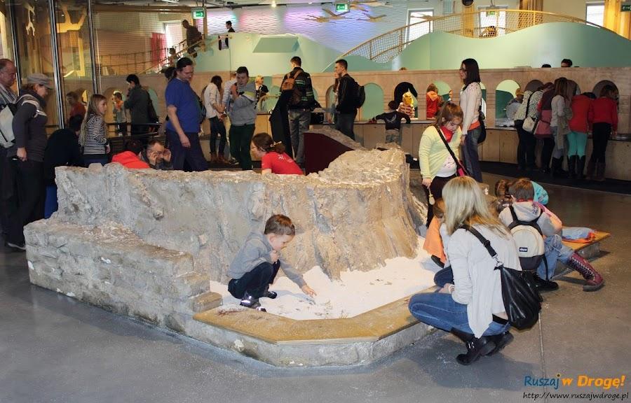 centrum nauki kopernik - zabawy w piasku