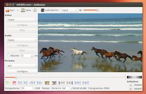 Avidemix 2.6.5 in Ubuntu Linux
