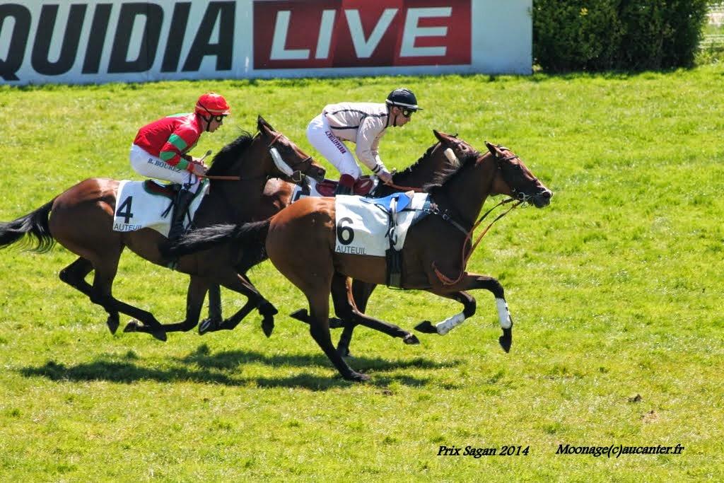 Photos Auteuil le 21-06-2014 IMG_2067