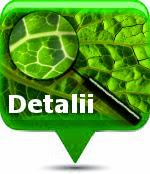 Vezi detalii consultatii online