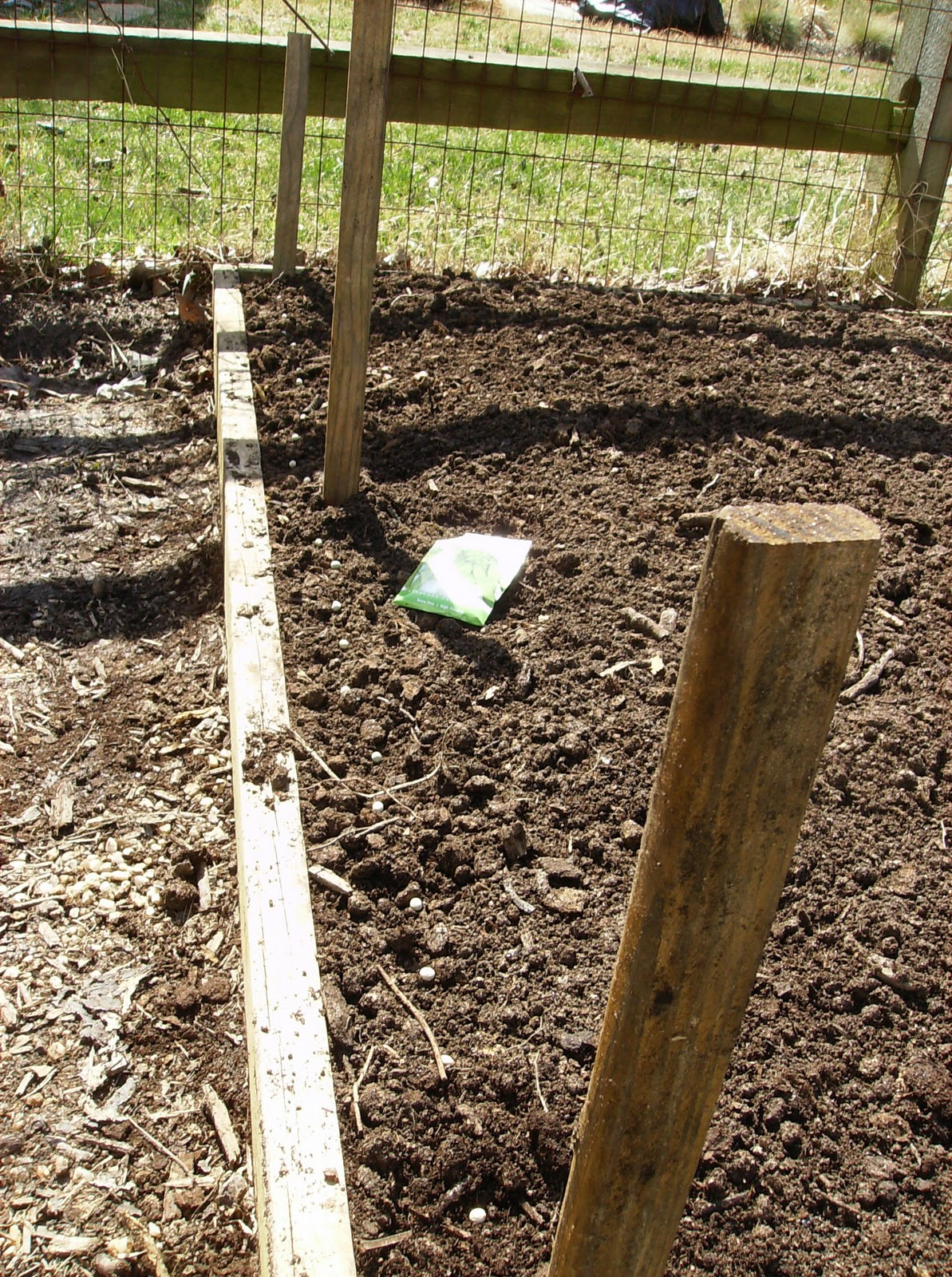 Planting Peas, Carrots, and Long Radishes in a Raised Bed Garden ...