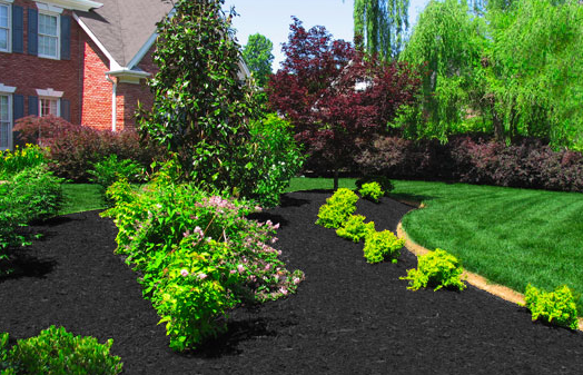 Landscape Gravel Colors : A color specialist in charlotte what mulch to choose