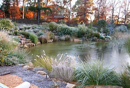 Stagno e laghetto da giardino con la neve interesse nei for Laghetti nei giardini